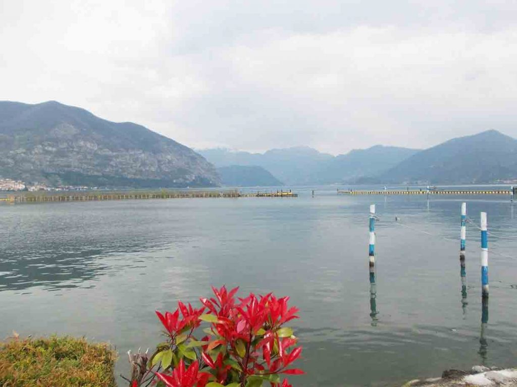 Un weekend in Franciacorta, in compagnia dei pesci del lago d'Iseo: gita a Clusane