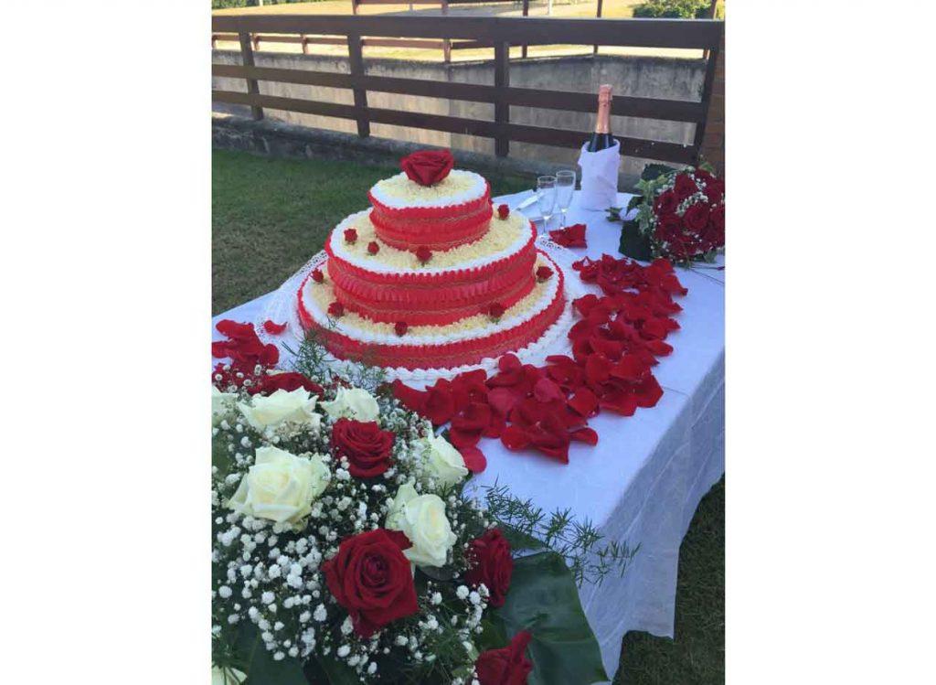 TortaSmall